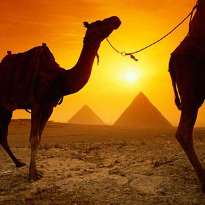 Египет отменил визы на летний сезон