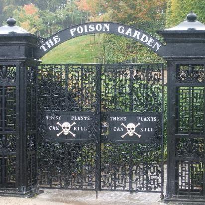 «Опасный» для жизни ботанический сад в Нортумберленде