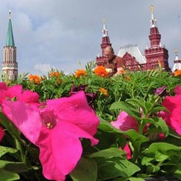 Фестиваль цветов на Красной площади откроет Игорь Бутман